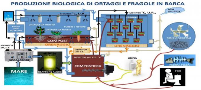 Produzione biologica in barca (da Roma Ocean World)