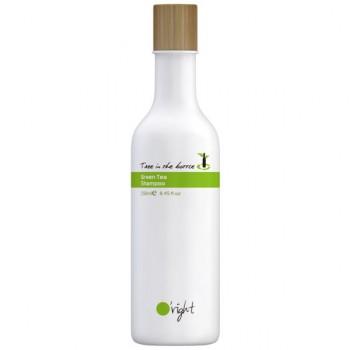 Tree in a bottle Taiwan shampoo riciclo raccolta differenziata plastica ORight emissioni di CO2 cradle to cradle biodegradabile