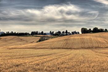 Foto di Giuseppe Moscato/Flickr
