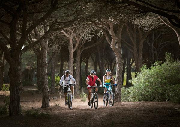Cicloturismo nei boschi