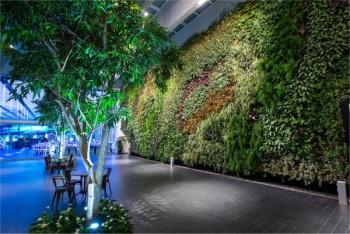 Vertical Field Superstudio Più riqualificazione edifici orti verticali orti urbani sostenibili Milano Green City erbe aromatiche cultura green case di paglia biodiversità