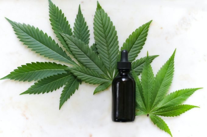 Cannabis e cbd