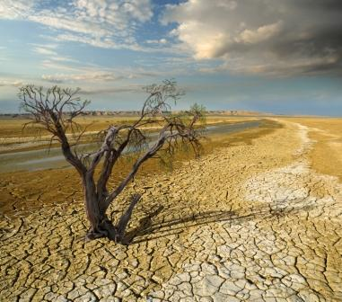Desertificazione - Image by iStock