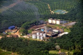 Un impianto di raffinazione dell'olio di palma in Malesia, foto Marufish/FlickrMarufish