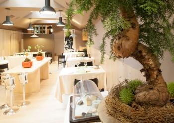 L'ambiente è importante nel ristorante d'alta cucina naturale Joia