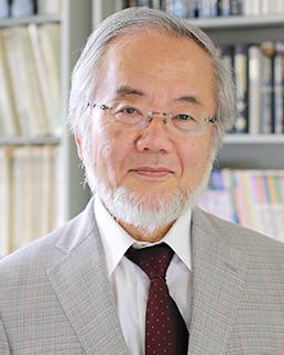 Yoshinori Ohsumi, nobel cellule