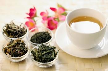 marco bertona,tè, consigli