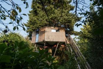 Casa sullalbero, Enzo Falsitta