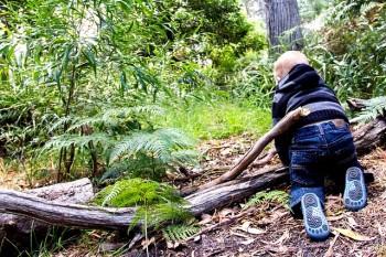 asilo nel bosco, bimbi, natura, education