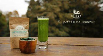 insetti, alghe, microserre, startup, food