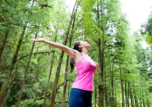 forest bathing,