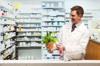 marijuana, cannabis, farmacia, dolore