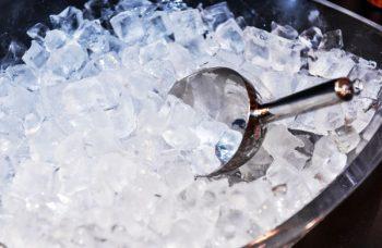 ghiaccio, conservazione, inga, batteri