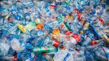 bottiglie di plastica, riciclo, economia circolare