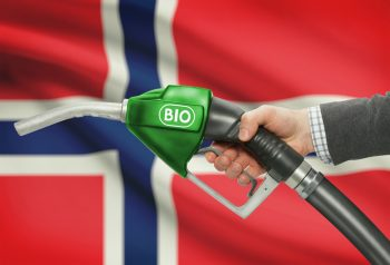 norvegia, olio di palma, biocarburante