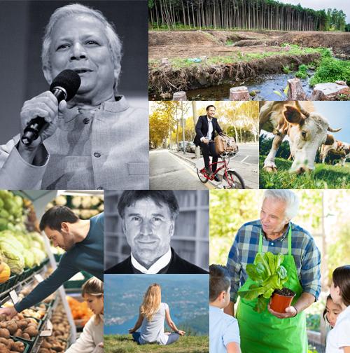 wise society sostenibilità