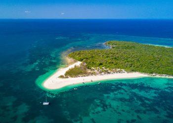 biodiversita, fauna, isole, ispra