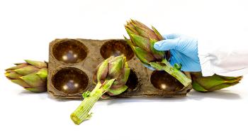 carciofi, packaging ecosostenibile, iit, plastica