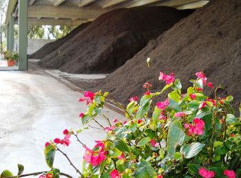 biowaste, economia circolare, compost
