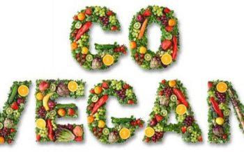 vegexpert, svezzamento vegan, vitaminab12