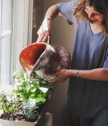Giardinaggio e ortoterapia
