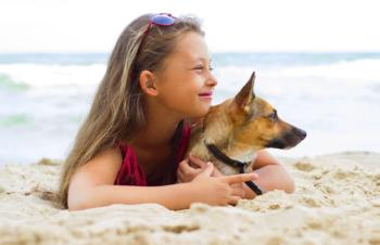 cane in spiaggia, vacanza, regole