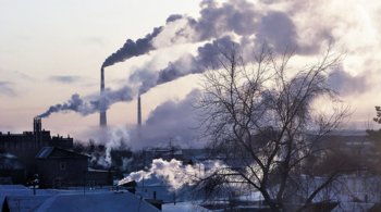 salute globale, oms, cure, inquinamento, malattie