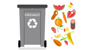 rifiuti organici, raccolta differenziata, cic