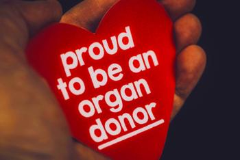 trapianti, donatori, organi, rene, fegato