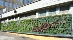tetti verdi, green roof, efficienza energetica, isolamento
