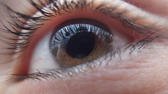innfocus, glaucoma, nervo ottico