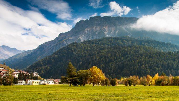 foreste italiane, legno, co2, anidride carbonica