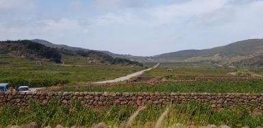 pantelleria: paesaggio dell'entroterra
