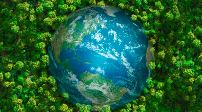 milano green forum, ambiente, condivisione