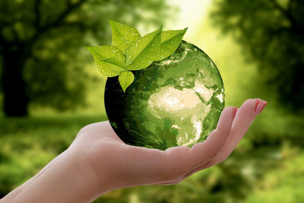 green bond, obbligazioni sostenibili, moodys