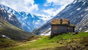 psicologia ambientale, casa, legno, alberi