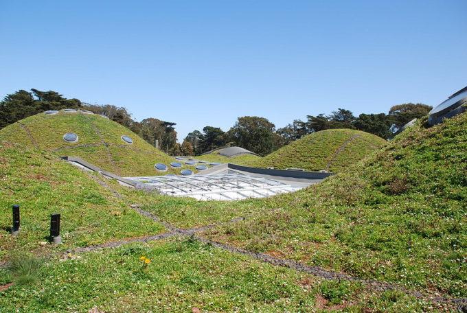 Il tetto green della California Academy of Sciences