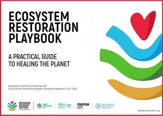 Giornata Mondiale Dell'Ambiente: restorative playbook