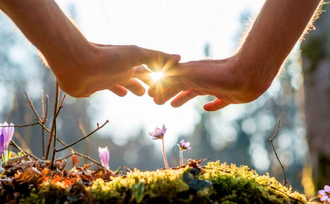 World Environment Day tutela ambientale salvaguardia dellambiente Onu giornata mondiale ambiente biodiversità