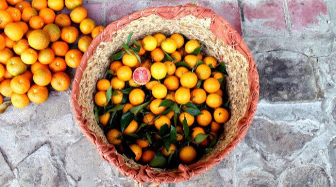 Raccolto di arance