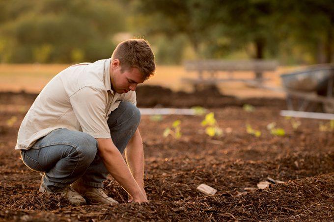 uomo che coltiva un orto urbano
