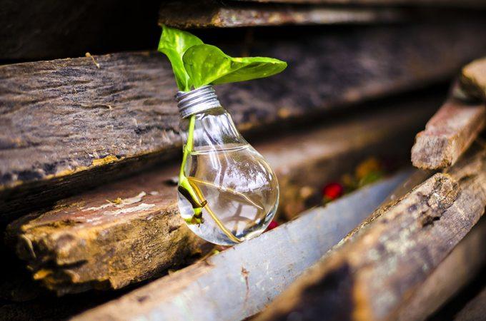 lampadina riciclata