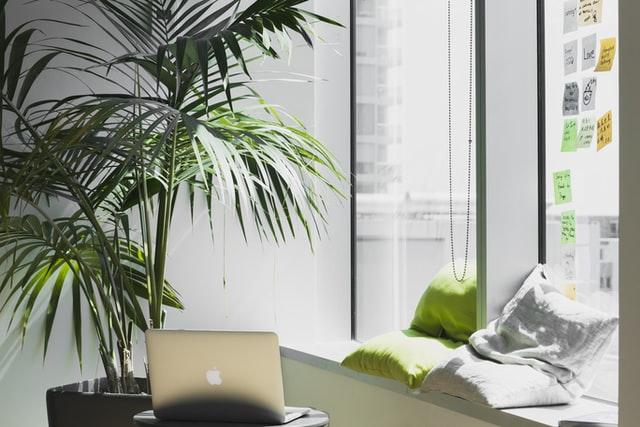ufficio con pianta