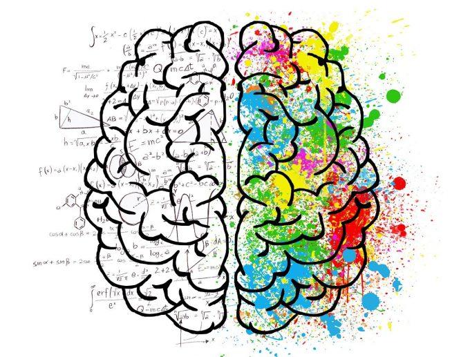 Cervello e longevità cognitiva