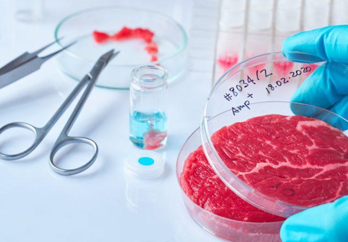 Carne sintetica