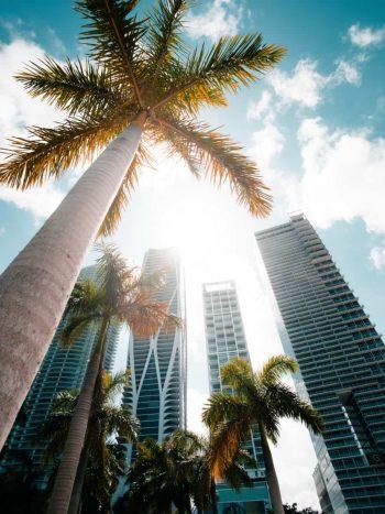 Isola di calore urbana