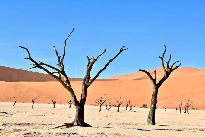 deserto in Namibia