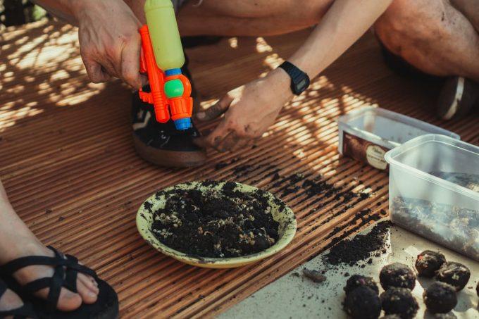 Come preparare le bombe di semi