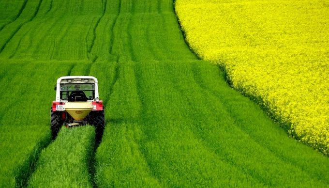 ogm in agricoltura