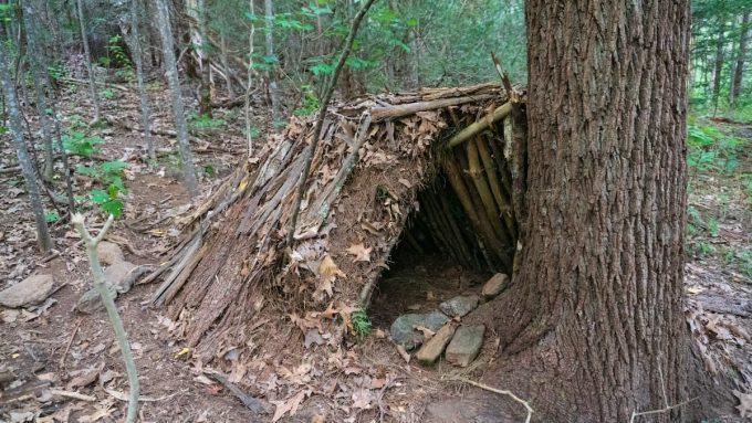 Riparo nel bosco